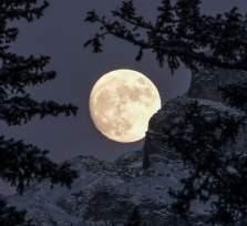 Νέα Σελήνη στους Ιχθύες